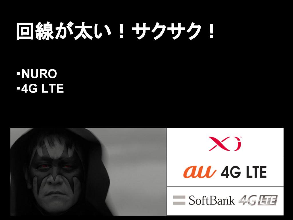 回線が太い!サクサク! ・NURO ・4G LTE