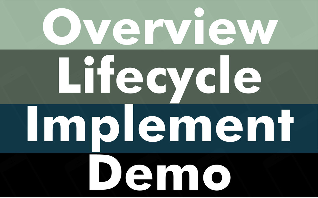 Overview Lifecycle Implement Demo