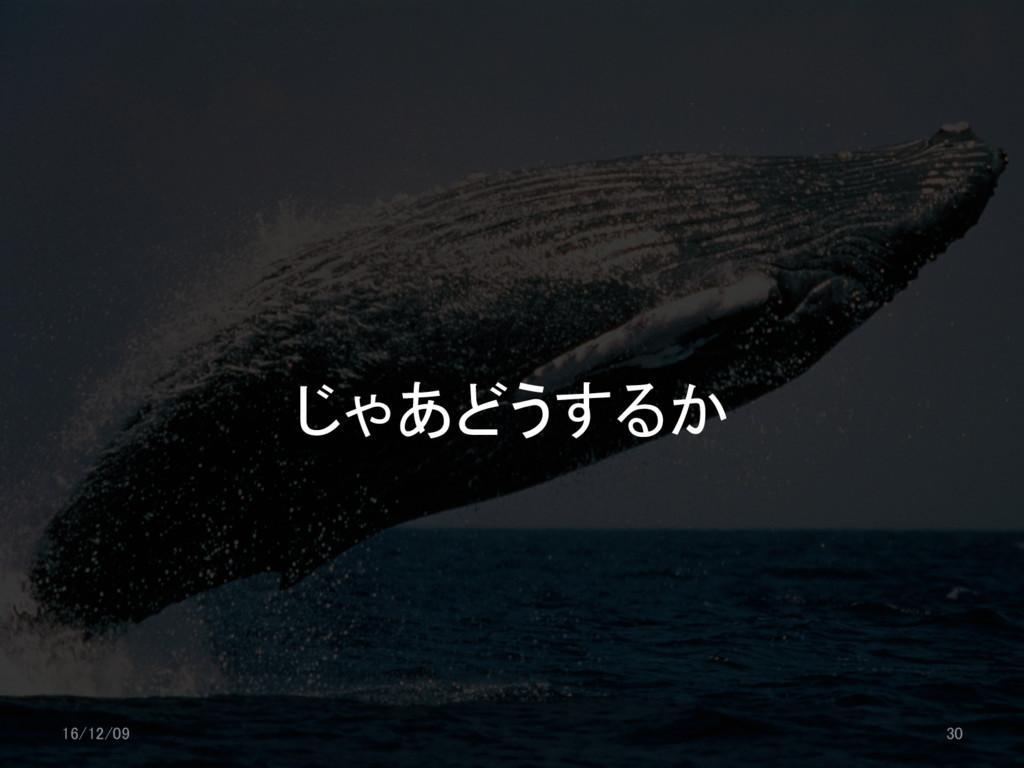 じゃあどうするか 16/12/09 30