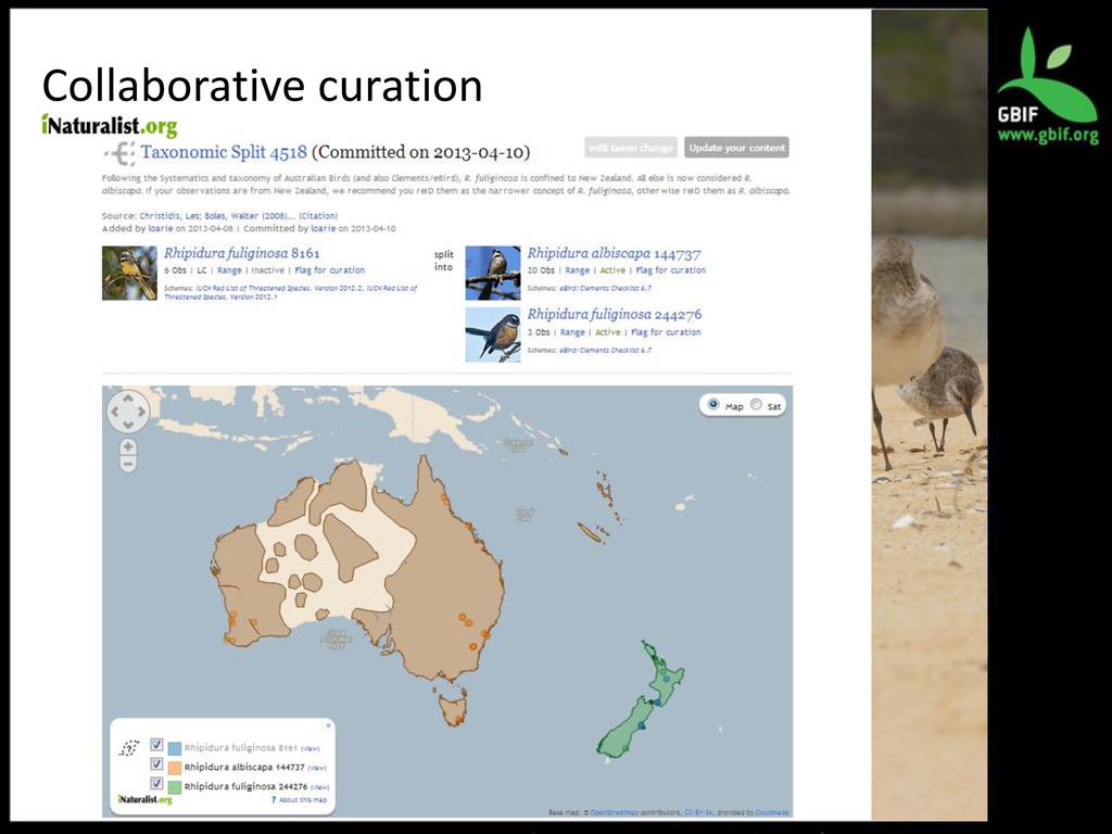 Collaborative curation