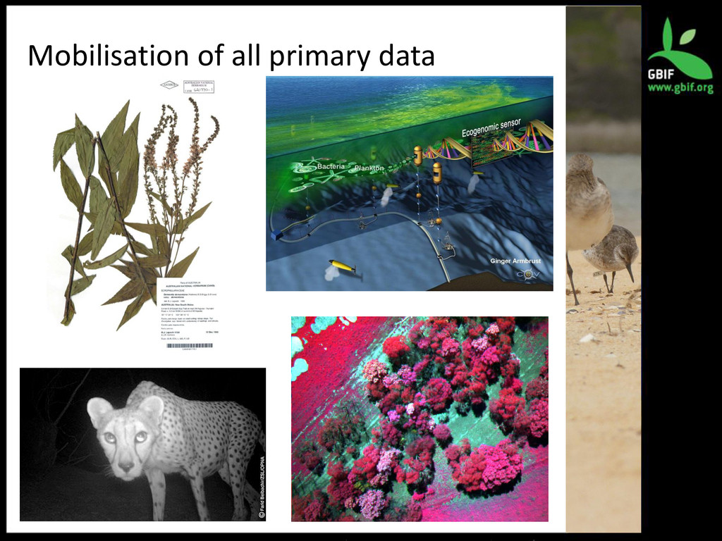 Mobilisation of all primary data