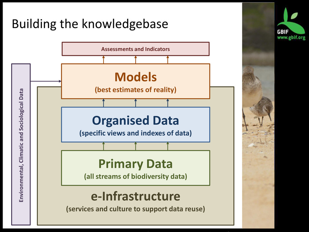 Building the knowledgebase e-Infrastructure (se...