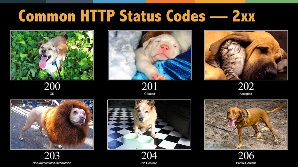 12 Common HTTP Status Codes — 2xx