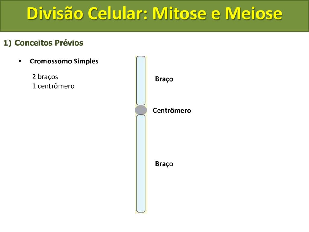 1) Conceitos Prévios • Cromossomo Simples Centr...