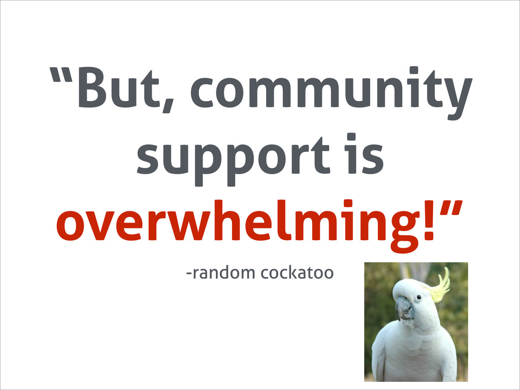 """But, community support is overwhelming!"" -rand..."