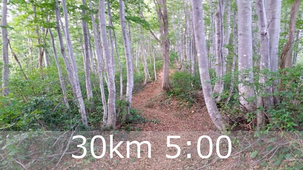 ハマコーが好きな トレランコース 34 30km 5:00