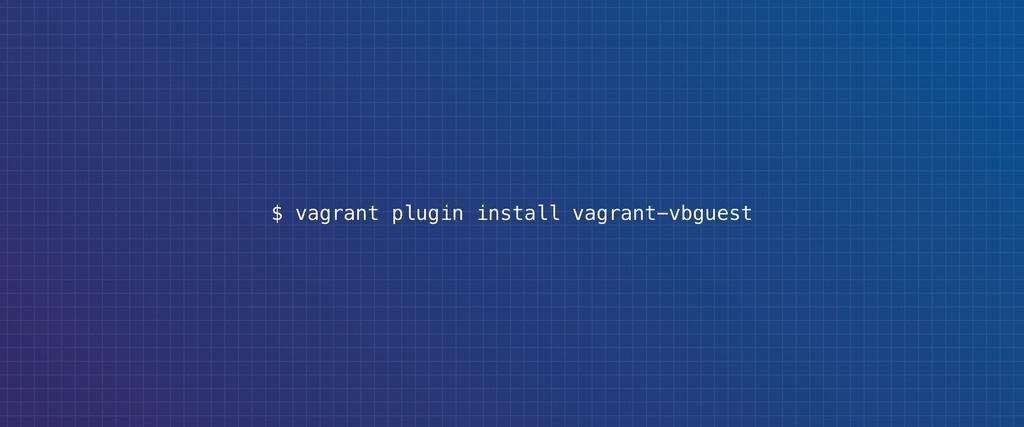 $ vagrant plugin install vagrant-vbguest