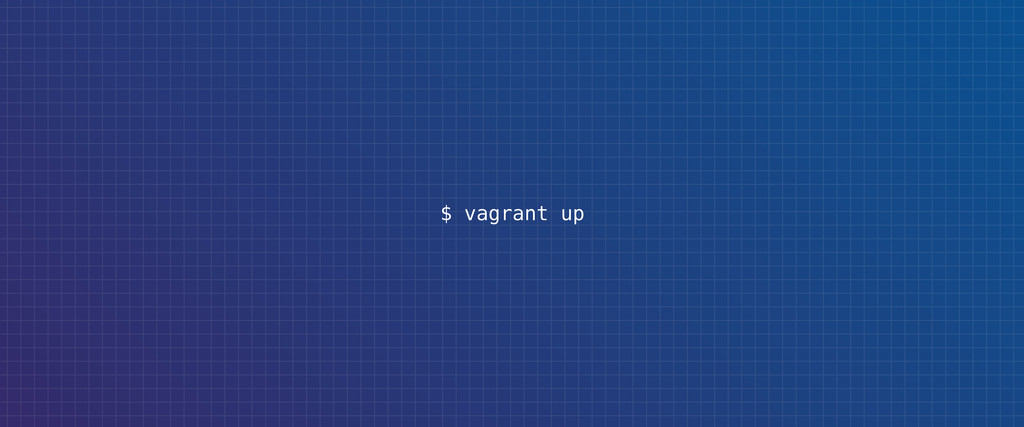 $ vagrant up