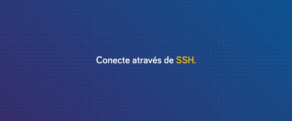 Conecte através de SSH.