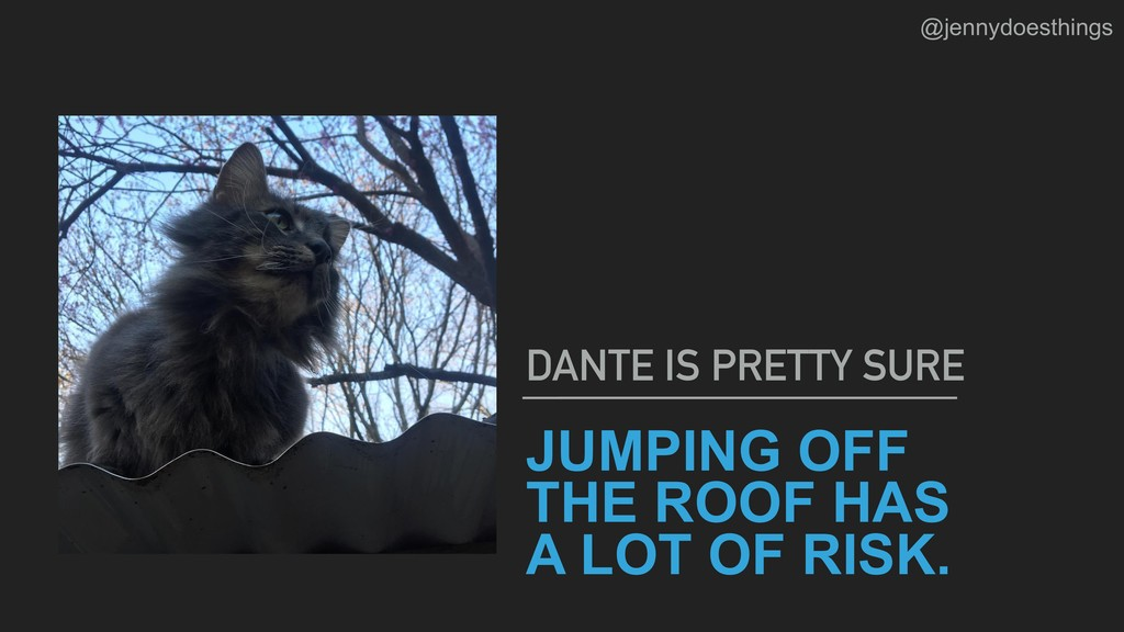 JUMPING OFF THE ROOF HAS A LOT OF RISK. DANTE I...