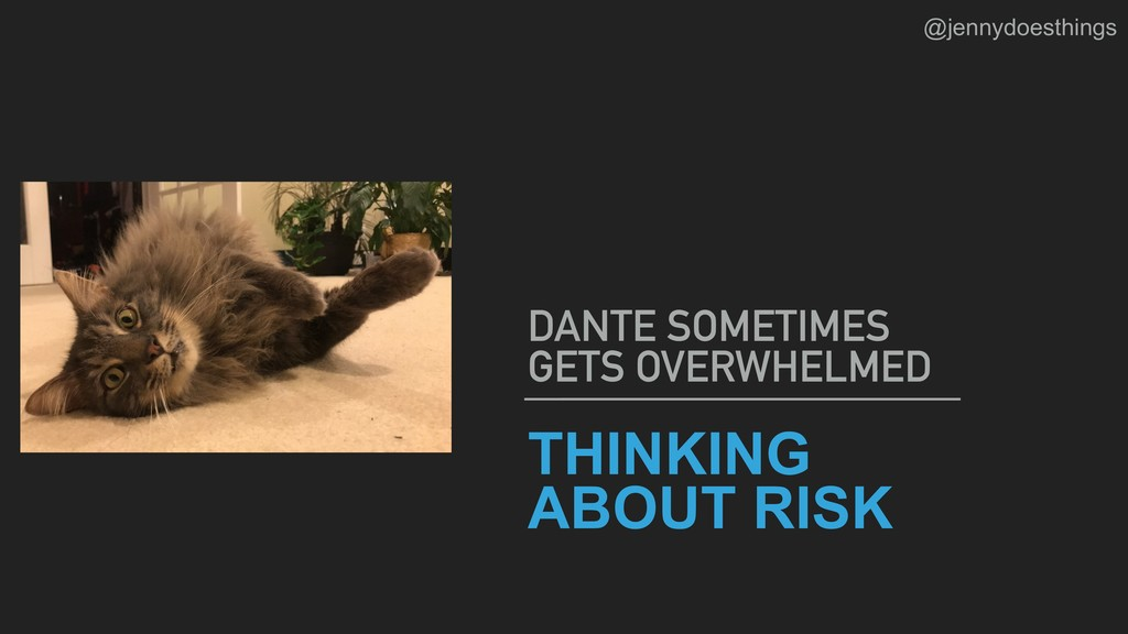 THINKING ABOUT RISK DANTE SOMETIMES GETS OVERWH...