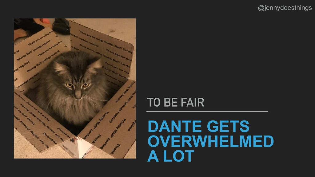 DANTE GETS OVERWHELMED A LOT TO BE FAIR @jennyd...