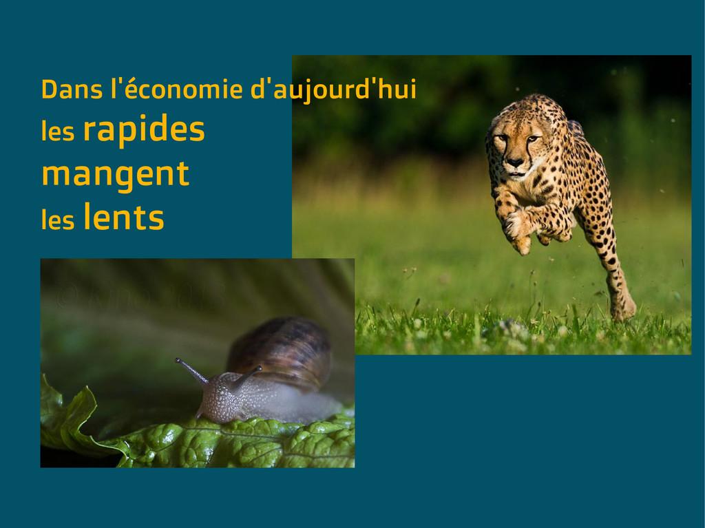 Dans l'économie d'aujourd'hui les rapides mange...