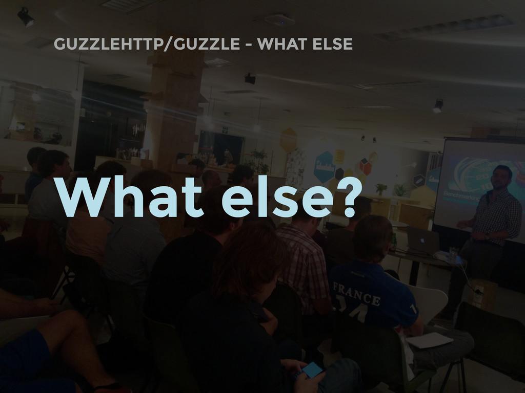 GUZZLEHTTP/GUZZLE - WHAT ELSE What else?