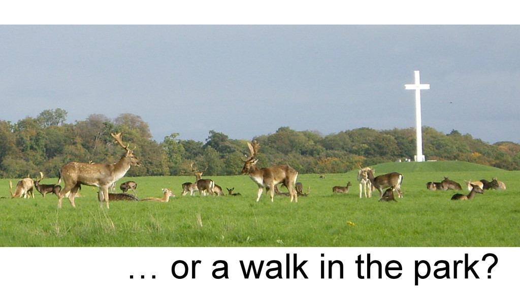 … or a walk in the park?