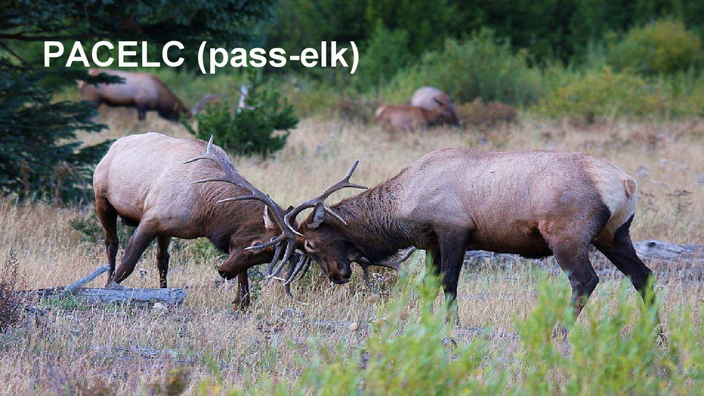 PACELC (pass-elk)