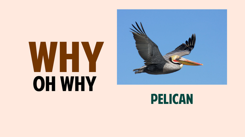 WHY oh why PELICAN