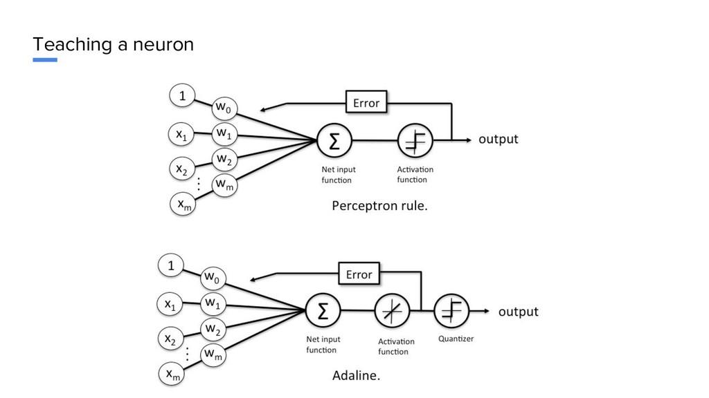 Teaching a neuron