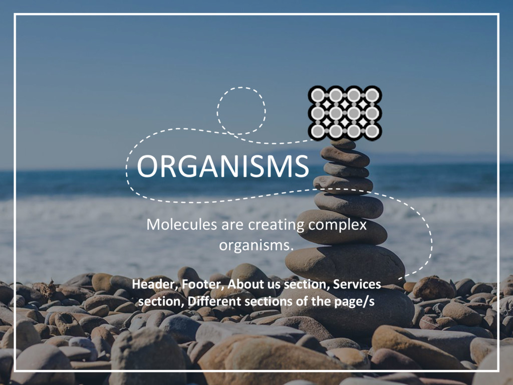 ORGANISMS Molecules are creating complex organi...