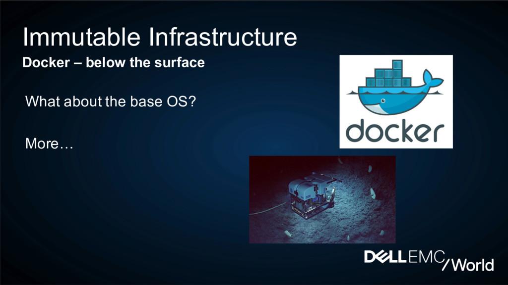 Immutable Infrastructure Docker – below the sur...