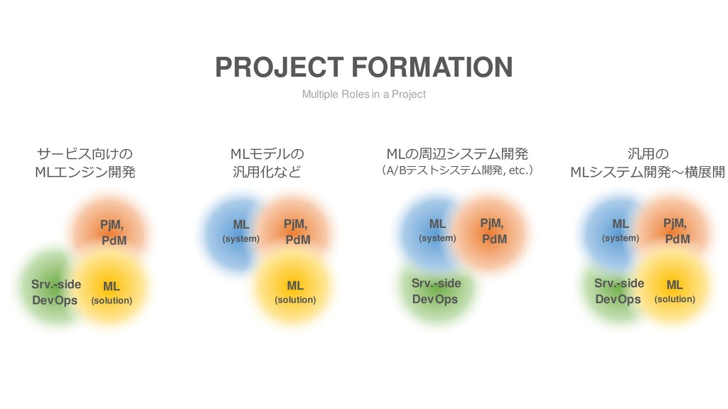 Multiple Roles in a Project PROJECT FORMATION サ...