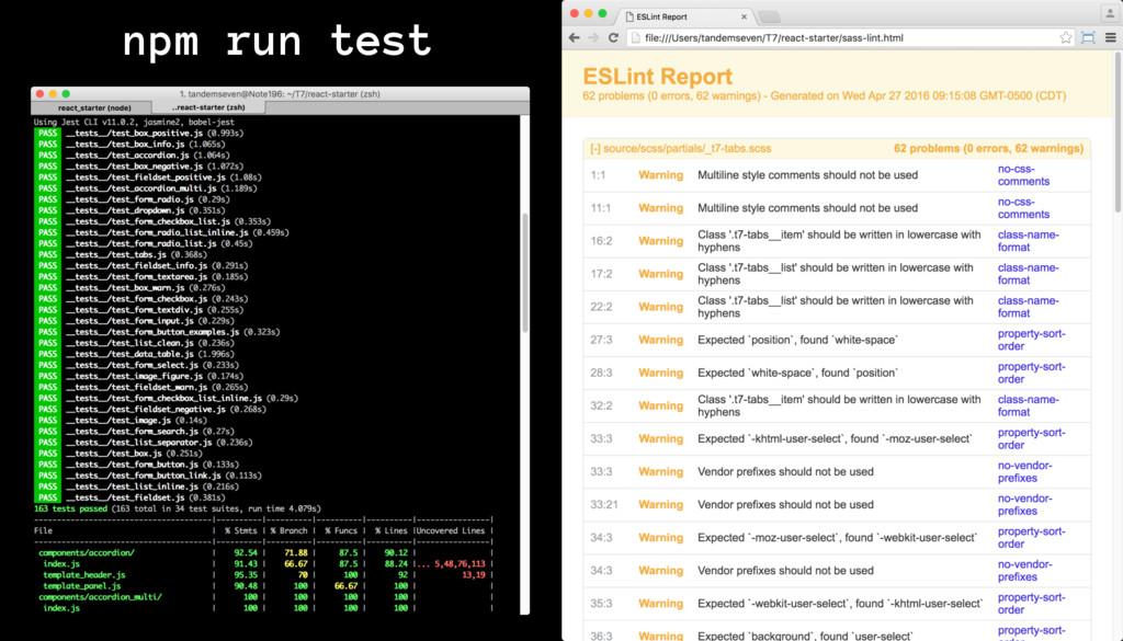 npm run test