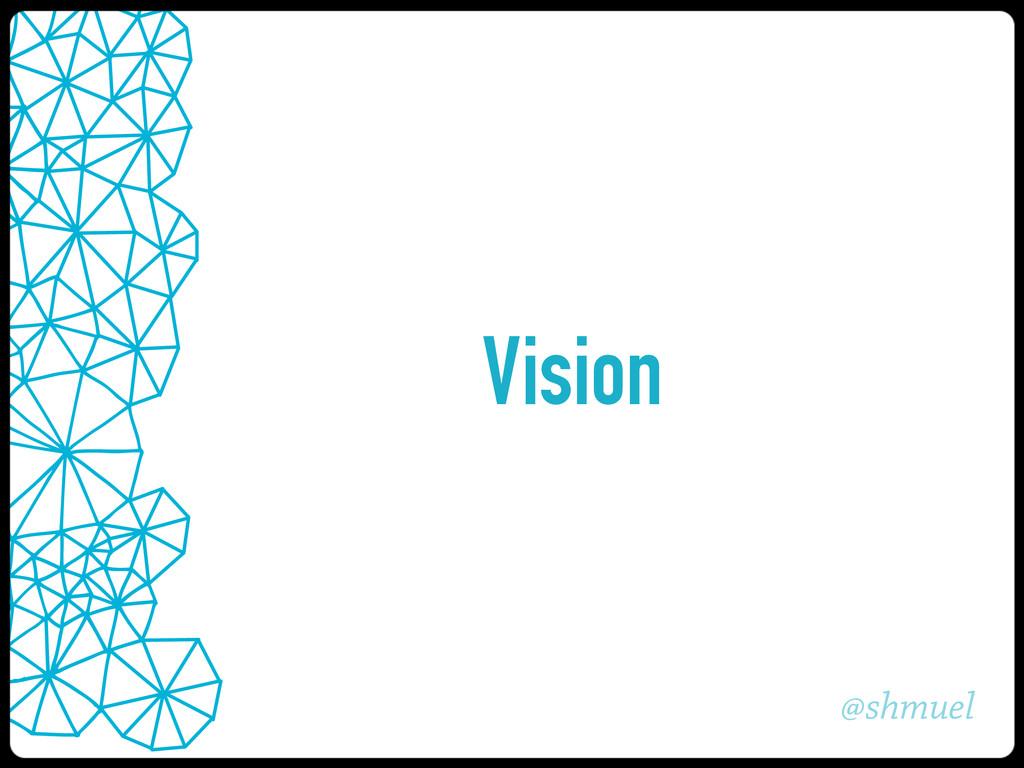 @shmuel Vision