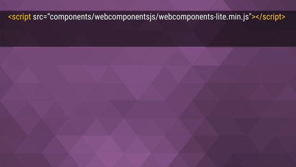 "<script src=""components/webcomponentsjs/webcomp..."
