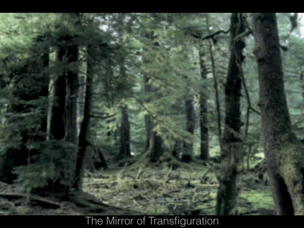 The Mirror of Transfiguration