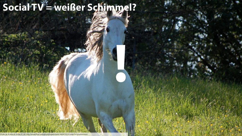 3 Social TV = weißer Schimmel? Photo by Andrea ...