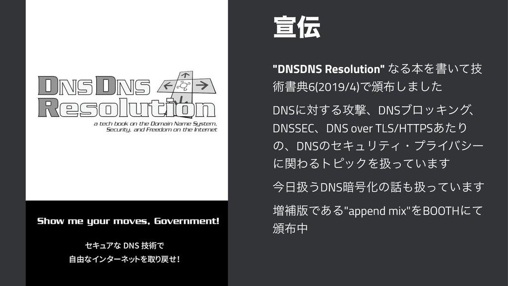 """એ """"DNSDNS Resolution"""" ͳΔຊΛॻ͍ٕͯ ज़ॻయ6(2019/4)Ͱ൦..."""
