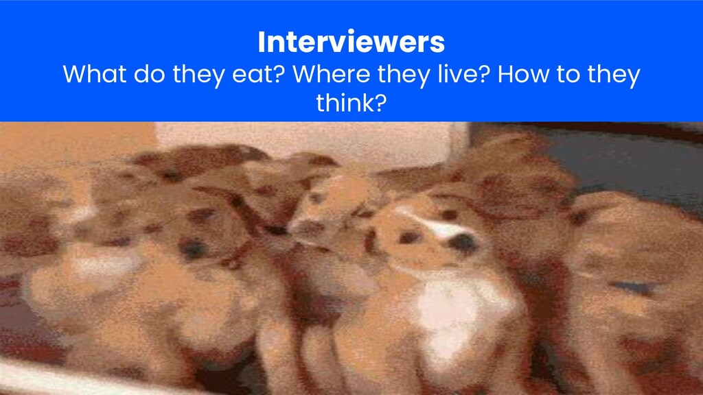 Interviewers What do they eat? Where they live?...