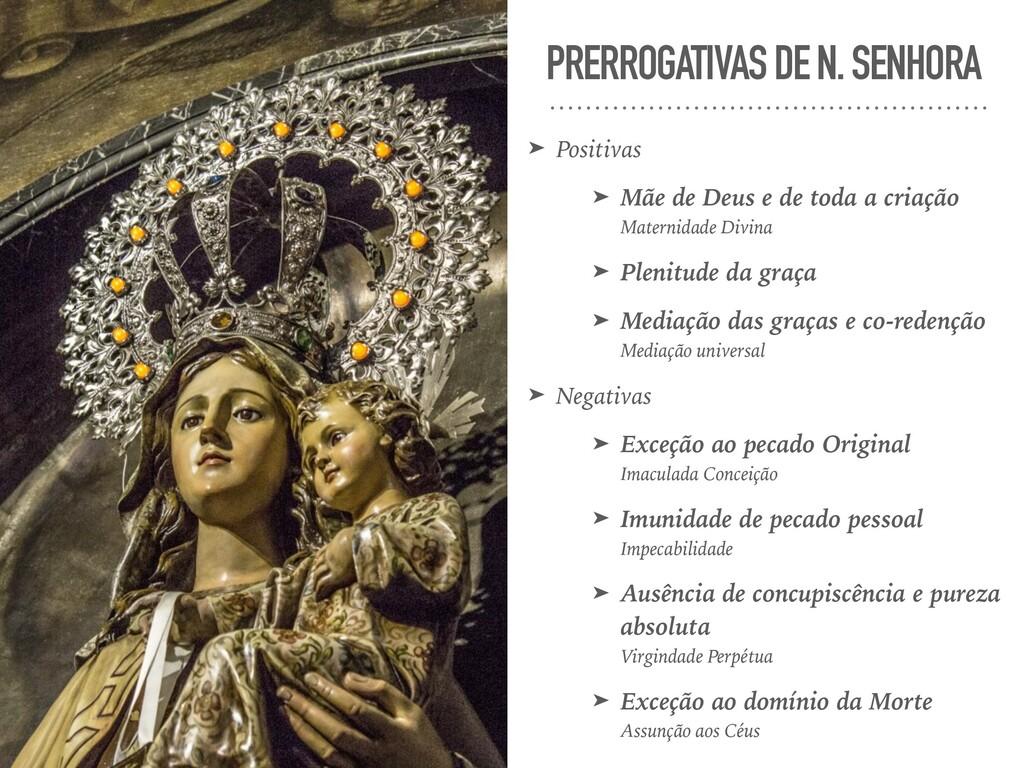 PRERROGATIVAS DE N. SENHORA ➤ Positivas ➤ Mãe d...