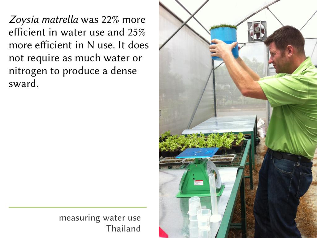 Zoysia matrella was 22% more efficient in water...