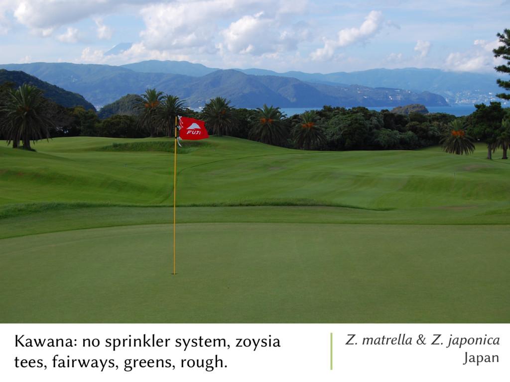 Kawana: no sprinkler system, zoysia tees, fairw...