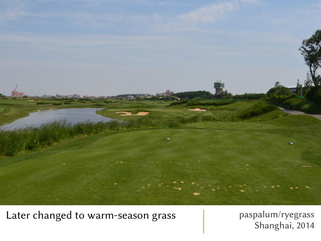 Later changed to warm-season grass paspalum/rye...