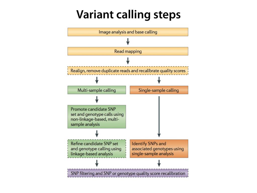 Variant calling steps