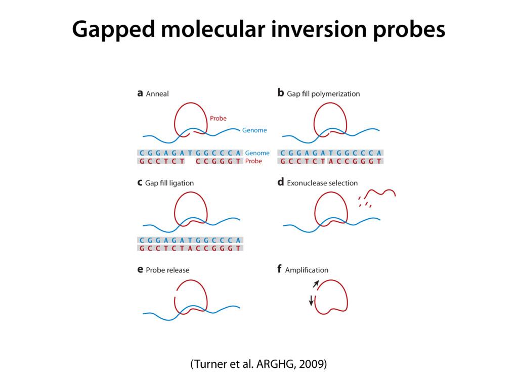 Gapped molecular inversion probes ter concept, ...