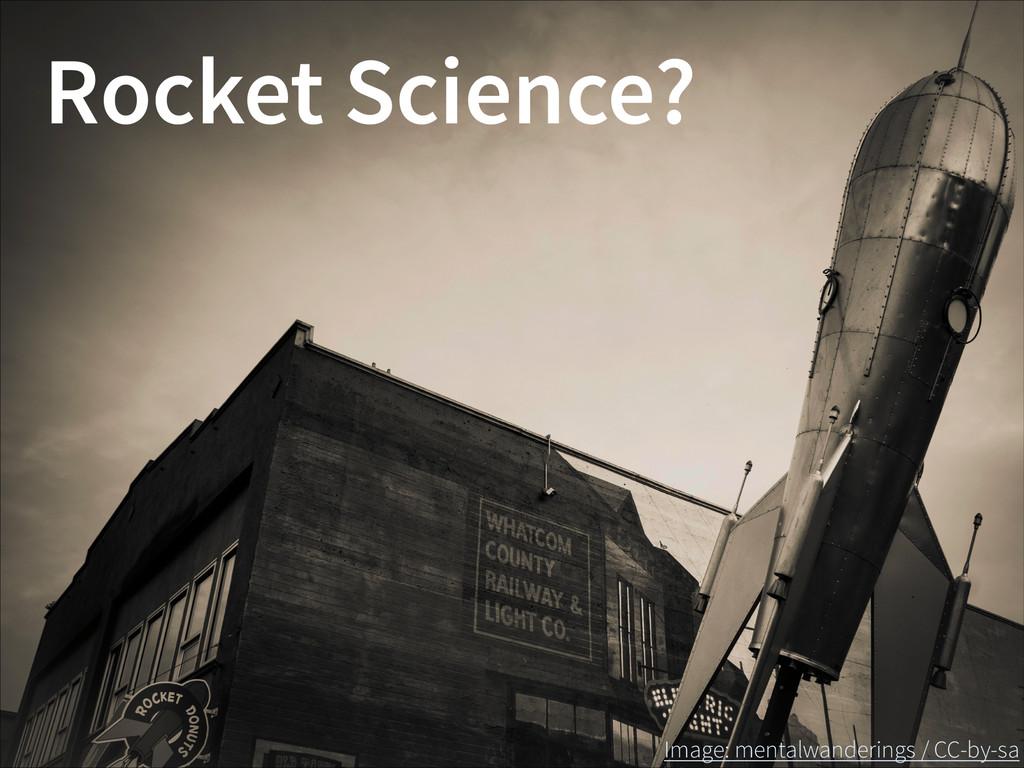 Rocket Science? Image: mentalwanderings / CC-by...