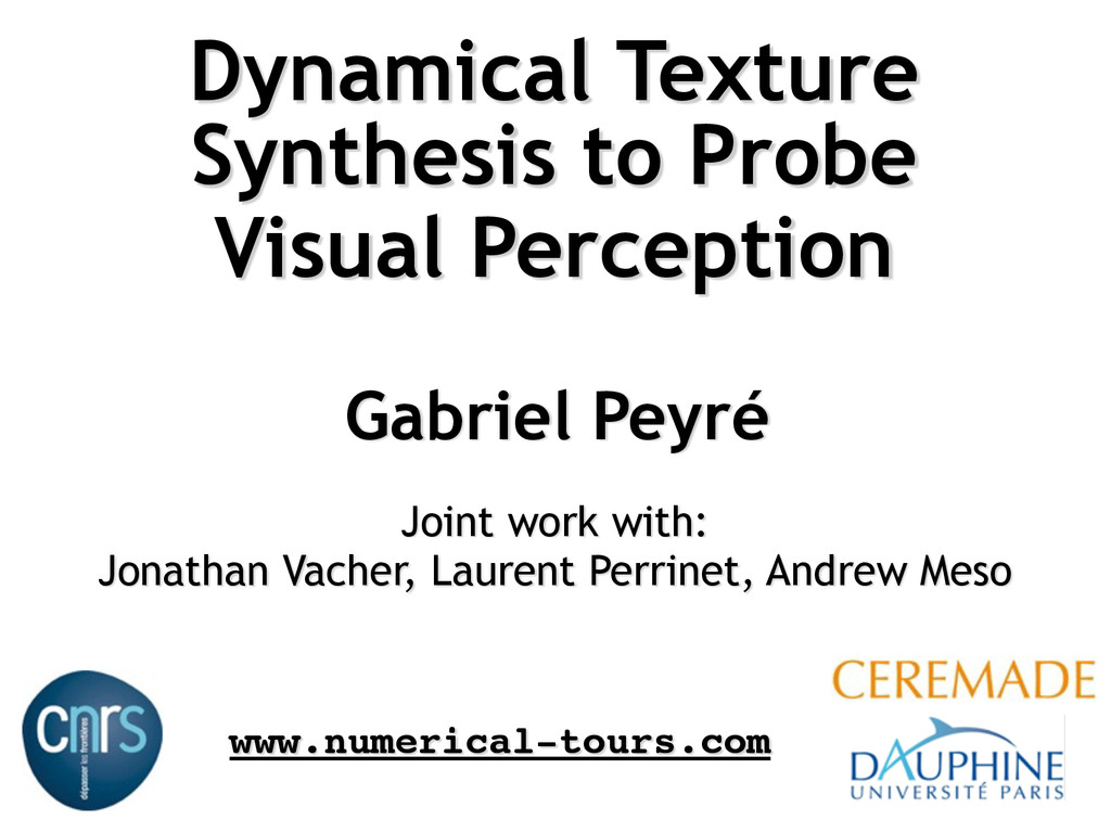 Dynamical Texture Synthesis to Probe Visual Per...