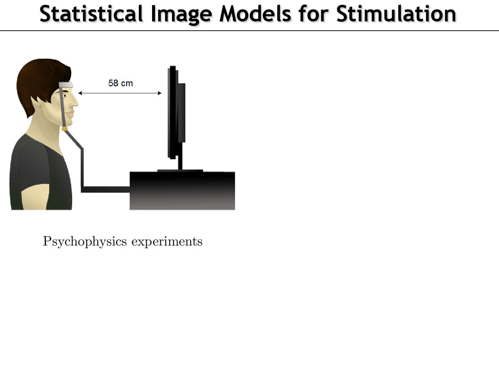Statistical Image Models for Stimulation aac Me...