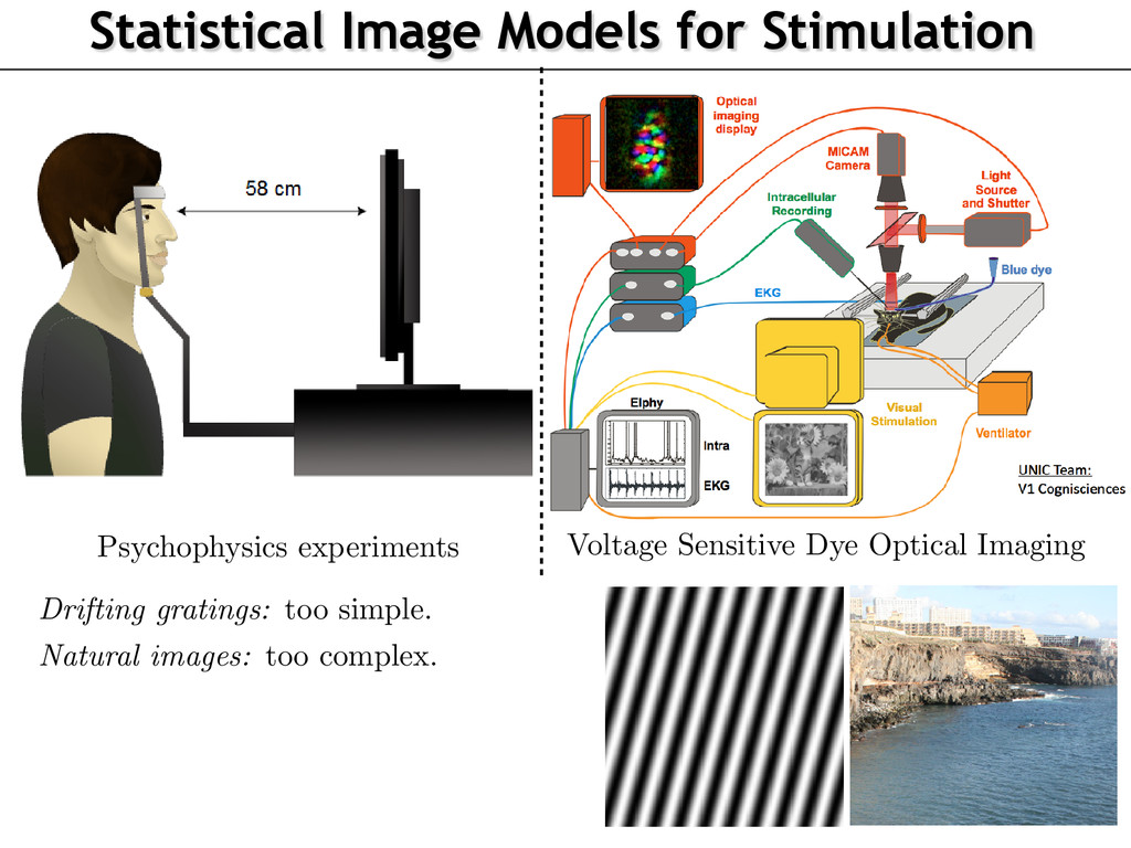 Statistical Image Models for Stimulation Contex...