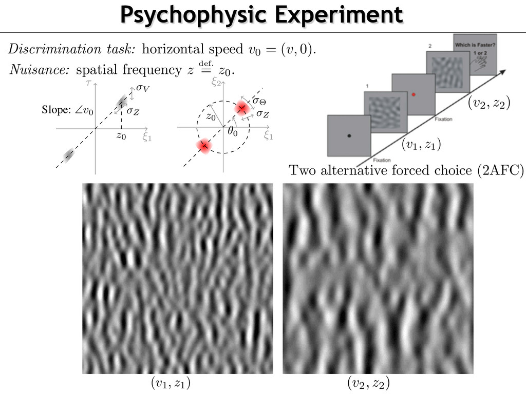 (v1, z1) Psychophysic Experiment Discrimination...