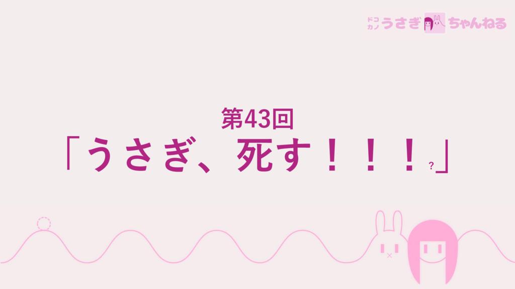 第43回 「うさぎ、死す!!! ? 」