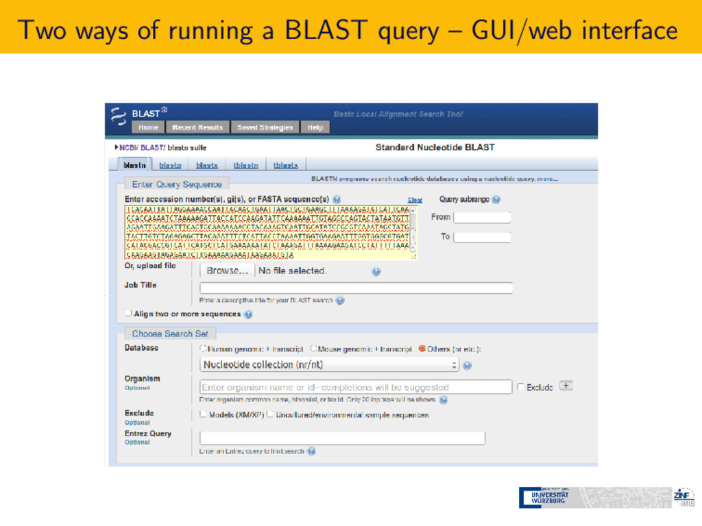 Two ways of running a BLAST query – GUI/web int...