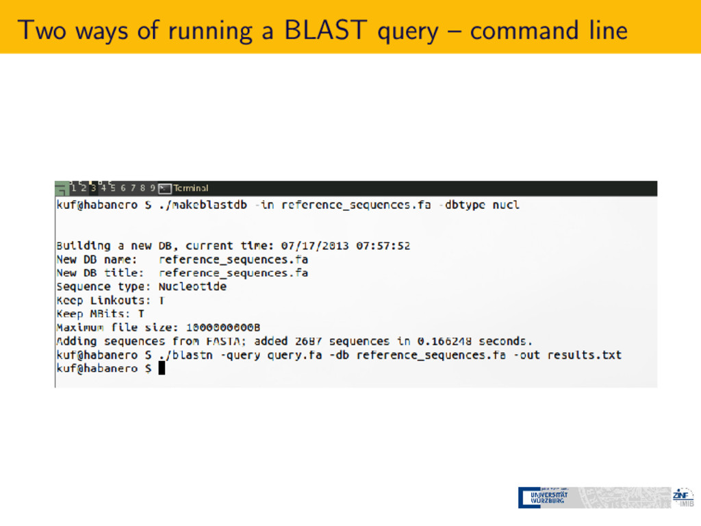 Two ways of running a BLAST query – command line