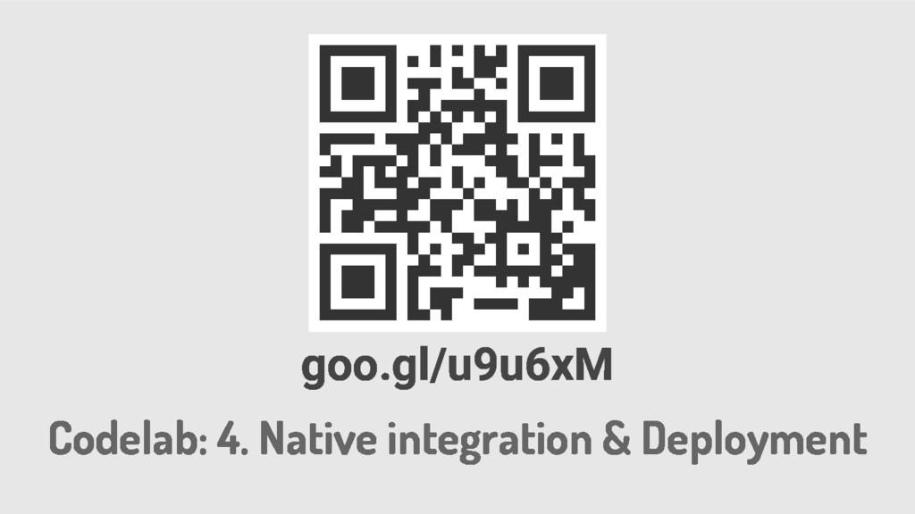 Codelab: 4. Native integration & Deployment goo...