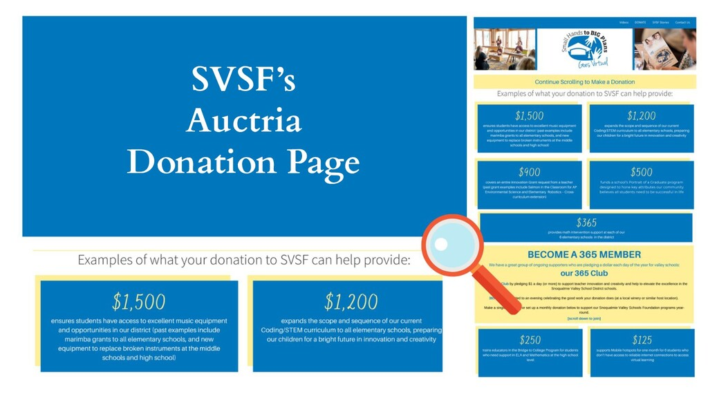 SVSF's Auctria Donation Page