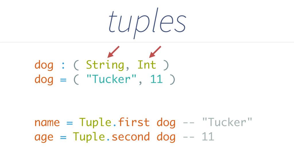 "dog : ( String, Int ) dog = ( ""Tucker"", 11 ) na..."
