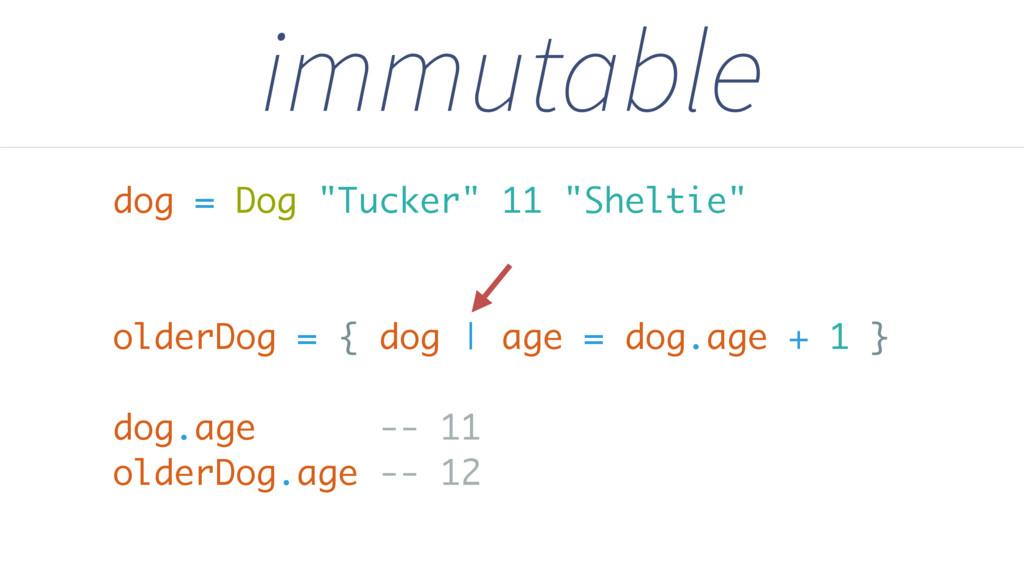 """immutable dog = Dog """"Tucker"""" 11 """"Sheltie"""" older..."""